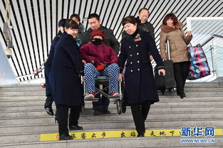 春运期间,沈阳铁路局开行图定旅客列车总数达316对,其中动车组列...