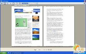Internet Explorer 7 评测
