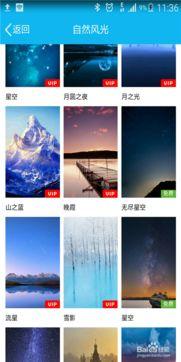 手机QQ聊天背景怎么设置