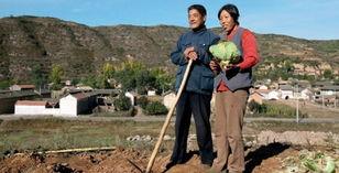 激活农民的土资产 让农民捧上金饭碗