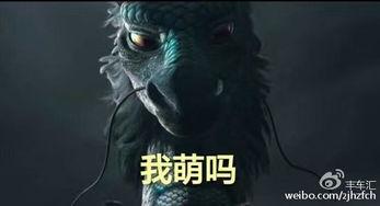 梦幻诛仙青云志副本通关攻略