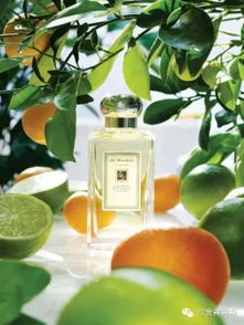 Lime Basil Mandarin柠檬罗勒和桔   这是一款专为男士和女士(中性)...