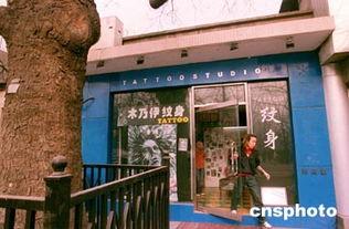 北京的一棵古树旁边新张一家彩绘纹身店,时尚前卫的工作室吸引年青...