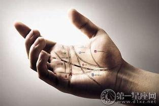仙阁杨公道长男人手相图解大全,男人手相看哪只手