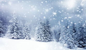 冬天第一场雪的说说优美句子