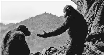 猩球崛起 黎明之战 连续两周称霸北美票房