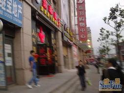 徐汇区上海南站正对面石龙路全底层旺铺商铺出售,上海南站正对面...