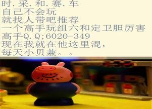 黑龙江省十一选五全偶今天能出来吗