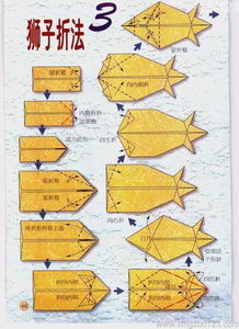 星座折纸之狮子座的折法