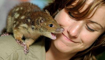 年终报道 人与动物的温情瞬间
