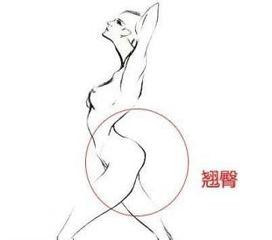 女性曲线线条画