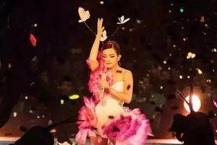 ...的名字是爱情 2017世界巡回演唱会深圳站 安可场
