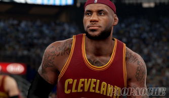 NBA2K16詹姆斯面补下载