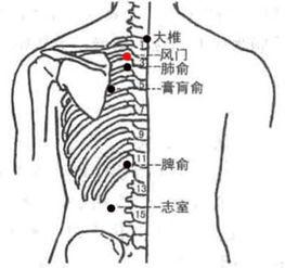 揉风门穴能缓解颈椎疼痛