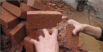 ...豆腐渣工程 楼倒墙塌祸国殃民害人不浅