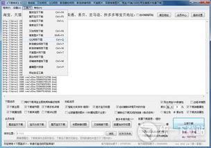 下图高手下载 下图高手高级版 图片批量下载器 v50.0 绿色版 免费下载 ...