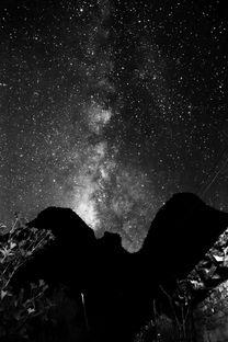 ...STAR 黑白星空