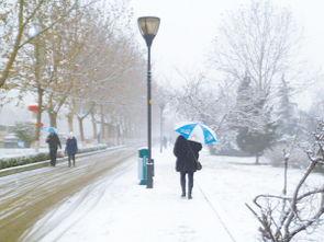 天空飘着六月的雪--昨天上午,邯郸市区降下小雪,市民撑伞在路上小心行走.本报记者 -...