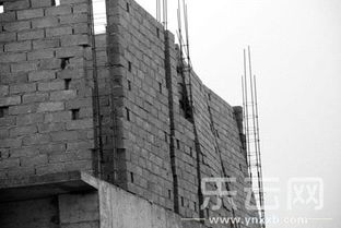 云南对 大风吹倒墙 涉事人员提出严肃批评
