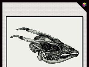 手绘时尚黑白素描骷髅头抽象插画油画