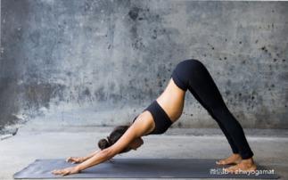 在地板上,臀部高高撅起,两腿距离与臀部同宽.   两手擦着地面往前...