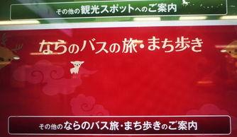 ... ,久别重逢,凉暮之月漫步关西】-日本游记