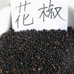 目前花椒种子价格是多少钱一斤