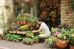 ...都 5 家隐世花店 每天与花为伴,未尝不是件美好的事