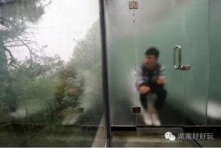 ...南一景区打造全透明玻璃厕所 网友戏称可静观其 便