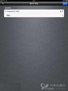 iPad激活教程