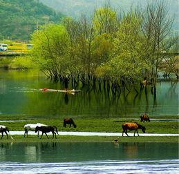 人与自然-看得见山水 记得住乡愁