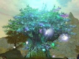 梦幻之光-永恒之塔 我的天使情节