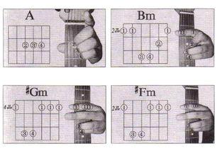 常用和弦及指法图 电吉他初级技巧