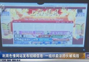 黄色网站名字官方-利用色情网站发招嫖信息 一组织卖淫团伙被捣毁