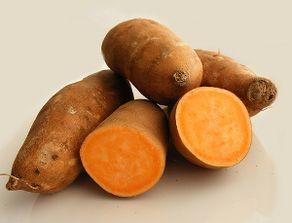 唐储-红薯