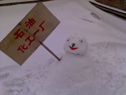...大雪了,都出来堆雪人 附漂亮pp