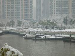 观雪记 3 隔岸观雪