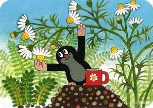 """...""""熊猫""""和捷克国家级卡通形象""""小鼹鼠""""共同作为主角,为孩子们..."""