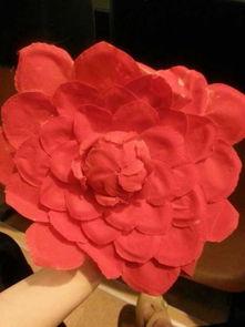 怎样做大红花