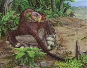 星露谷物语目录bug 星露谷物语恐龙蛋孵化