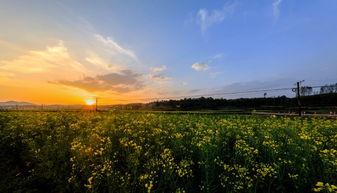 村里招举开会动态图-美丽的乡村风景图片 第1张