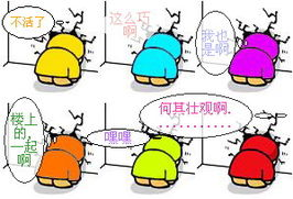 LOLI养成计划 水区 表情大征集 Powered by phpwind -表情大征集