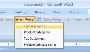 ...eports with SQL Reporting Services 2005 SoftArtisans OfficeWriter
