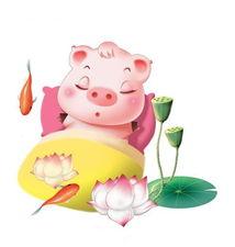 成功.如果你是一头懒猪,在端午期间懒得折腾,那么宅在家中或者外...