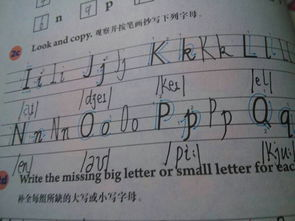 ...哪位高人告诉我26个英文字母的大小写准确书写