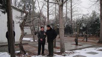 ...市盆景艺术大师花汉民在大师充满艺术氛围的小院中亲切交谈-市人保...