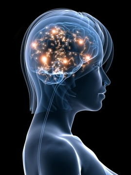 偏重用右脑的人比较感性,随意随心,爱创作和有艺术天分,但组织能...