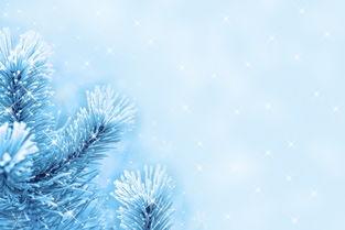 雪的个性网名伤感-纷纷落叶飘向大地,白雪下种子沉睡,一朵花开了又迅速枯萎,在流转...