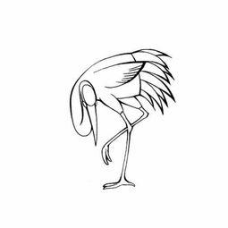 低头戏水的丹顶鹤简笔画