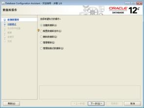 oracle12c的 window版本 安装详解